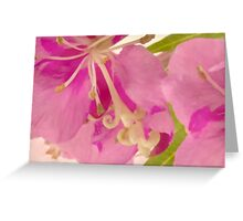 Fireweed Macro Digital Watercolor Greeting Card
