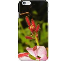 Bug On The Gaura iPhone Case/Skin