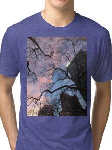Sweet  Tri-blend T-Shirt