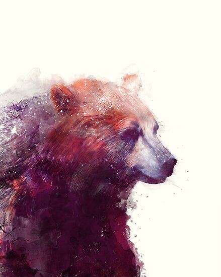Bear // Calm by Amy Hamilton