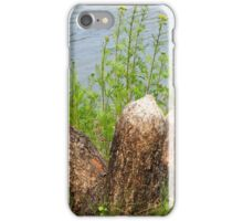 Beaver Art iPhone Case/Skin