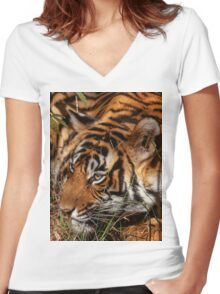 Wild Bengal Tiger Women's Fitted V-Neck T-Shirt