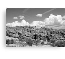 Salt Valley 5 Arches National Park Canvas Print