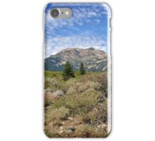 Eastern Sierras iPhone Case/Skin