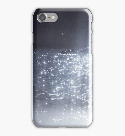 Swans, Archipelago, Sweden, Gothenburg  iPhone Case/Skin
