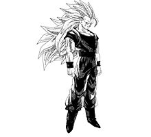 Goku super saiyan 3 (dark shirts) Photographic Print
