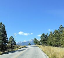 On the Road in Colorado by Kathleen Brant