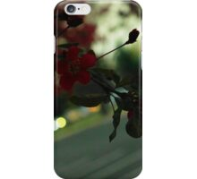 More Tree Flowers iPhone Case/Skin