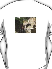HOLY WATER AT THE HOUSE OF THE VIRGIN MARY-TURKEY T-Shirt