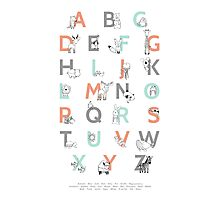 Animal Alphabet Photographic Print