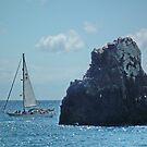 Sailing on the Atlantic by AnnDixon