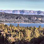 Cougar's View of Big Bear Lake by Rosalee Lustig