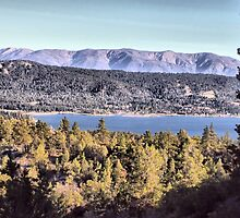Cougar's View of Big Bear Lake by Rosalee Lustig
