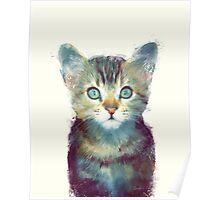 Cat // Aware Poster