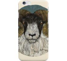 Flock II iPhone Case/Skin