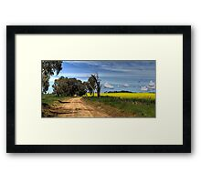 Through the Canola Framed Print