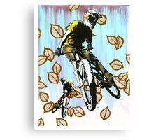 Aspen Folly Canvas Print