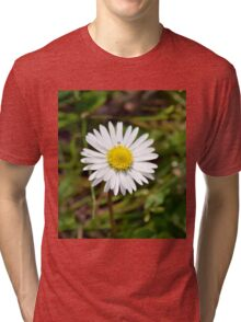 Daisy Tri-blend T-Shirt