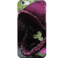 Dark Tulip In Rain iPhone Case/Skin
