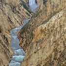 Grand Canyon of the Yellowstone  by John  Kapusta