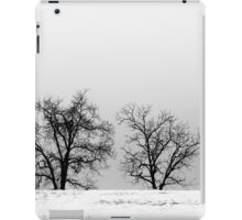 One Winter Day iPad Case/Skin