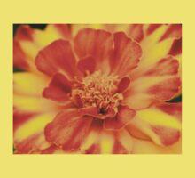 Orange and Yellow Marigold Baby Tee