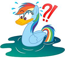 Rainbow Dash Duck My Little Pony Photographic Print