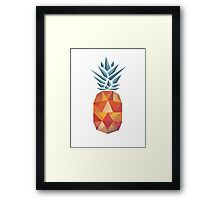 Prickly Pineapple Framed Print
