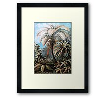 Plants & Animals, palm, tree, beach, ferns, psychedelic, art, illustration, haeckel,  Framed Print