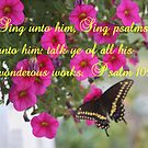 PSALM 105:3 by Pauline Evans