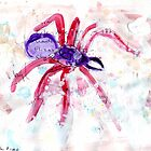 Spider by John Douglas