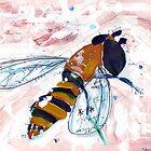 Bee by John Douglas