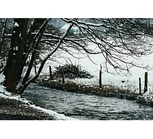 Tree Over Winter River Photographic Print