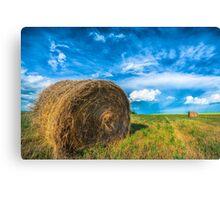 The Prairies Canvas Print