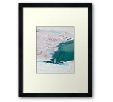 Watermelon Snow Framed Print