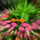 Floral Abstract by Kathy Weaver
