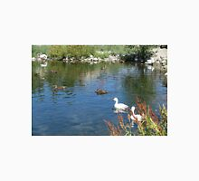 Ducks and swan in a water pond. Unisex T-Shirt