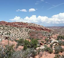 Salt Valley 1 Arches National Park by marybedy