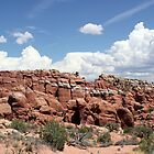 Salt Valley 5 Arches National Park by marybedy