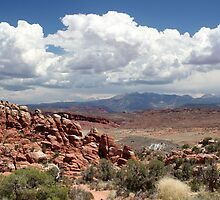 Salt Valley 6 Arches National Park by marybedy