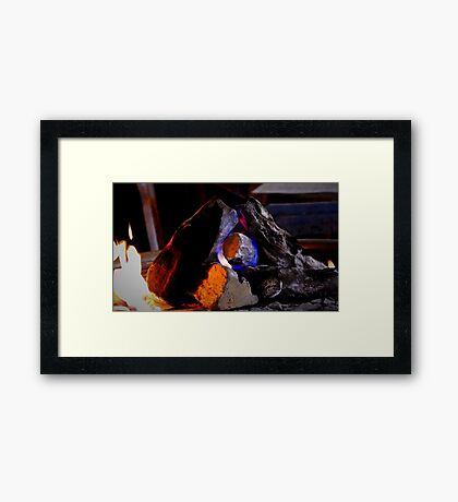 Sago No. 23 Framed Print