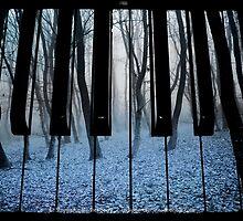 Play Autumn's Sombre Blue by Stephanie Rachel Seely