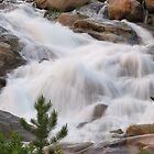 Alluvial Fan Falls by Bill Hendricks