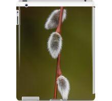 Willow Catkins in Stanley Park iPad Case/Skin