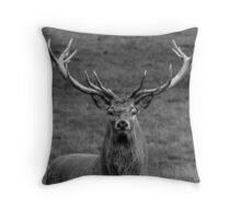 Red Deer Head Throw Pillow