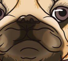 Classy Pug Sticker