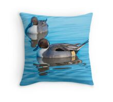Pintail Duck Throw Pillow