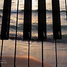 Play The Ocean by Stephanie Rachel Seely