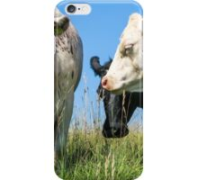 The cows on Minchinhampton Common iPhone Case/Skin