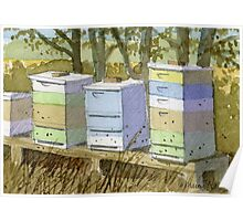Rich's Bee Hives Poster